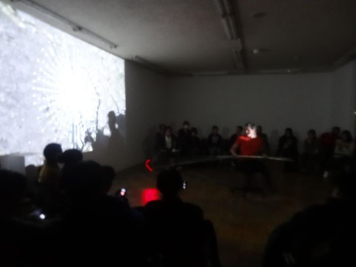 Nippon International Performance Art Festival